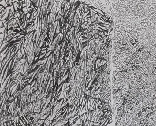 Tilacino - Particolare