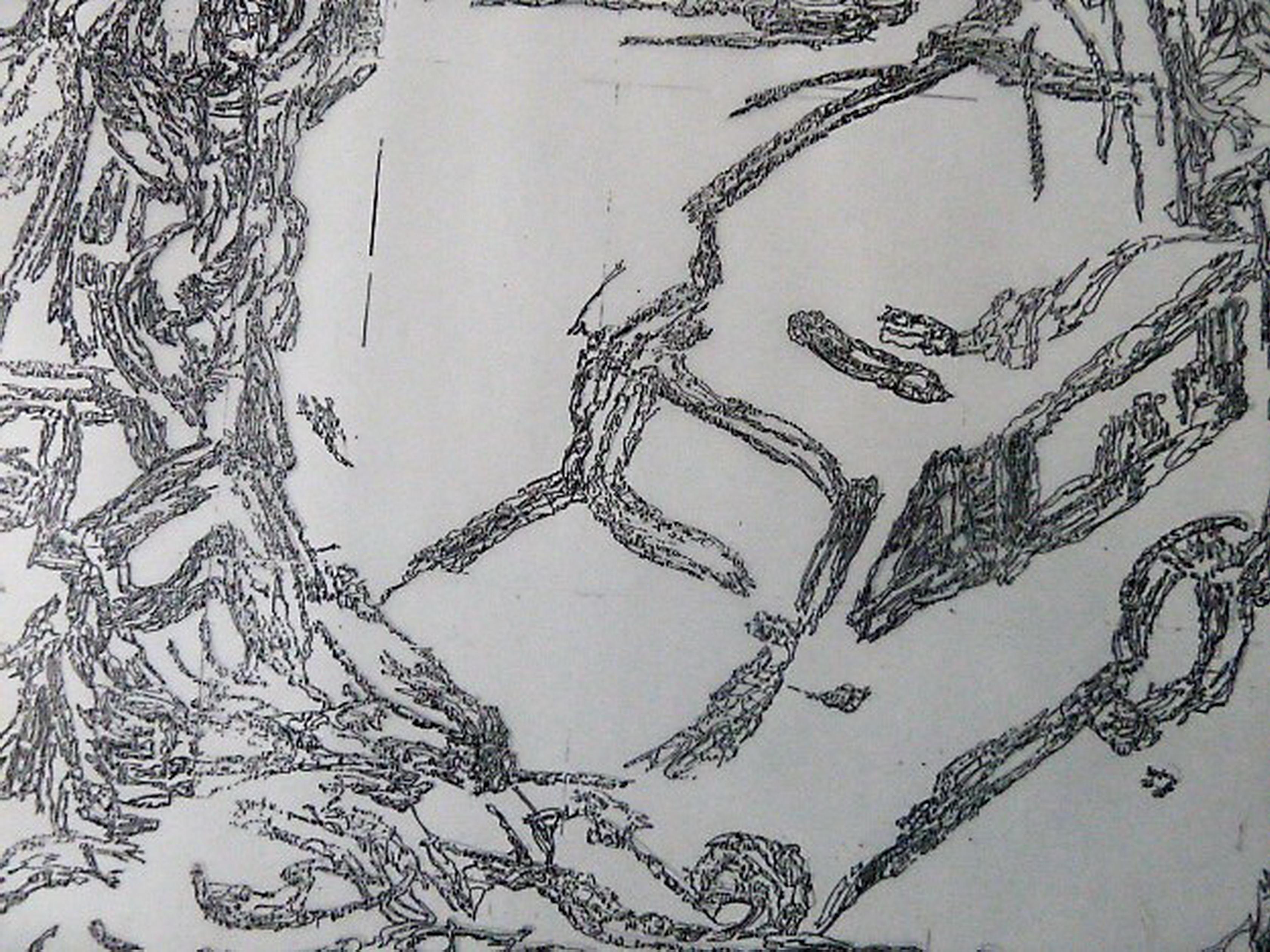 A kallíste -Disegno preparatotio
