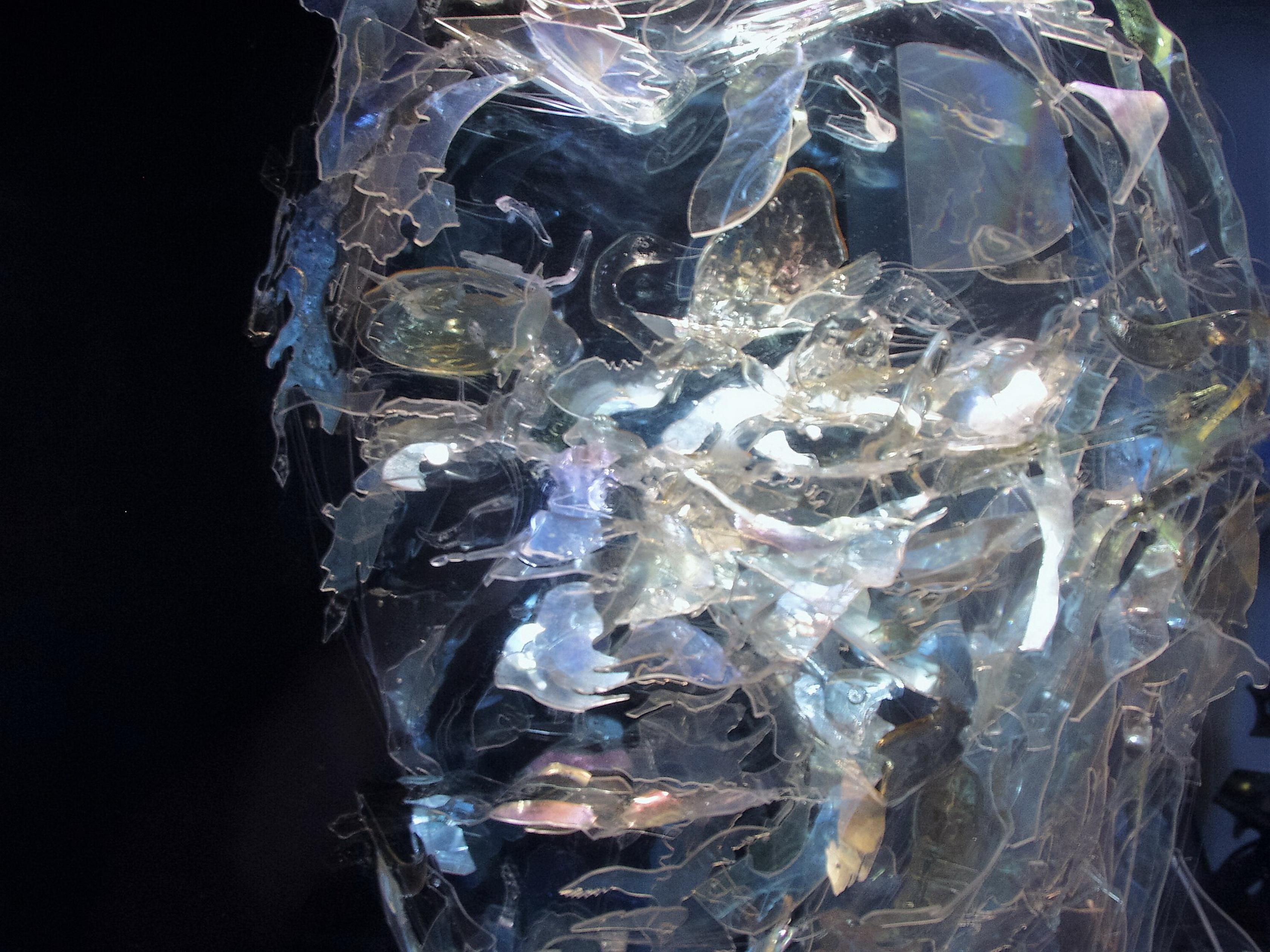Maurizio Aprea - The hunter - Endosculpture